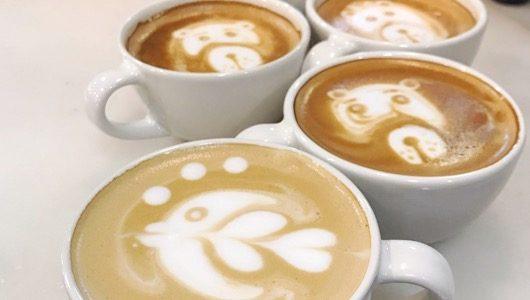 curso de Presentación y carta de cafés de mospresso